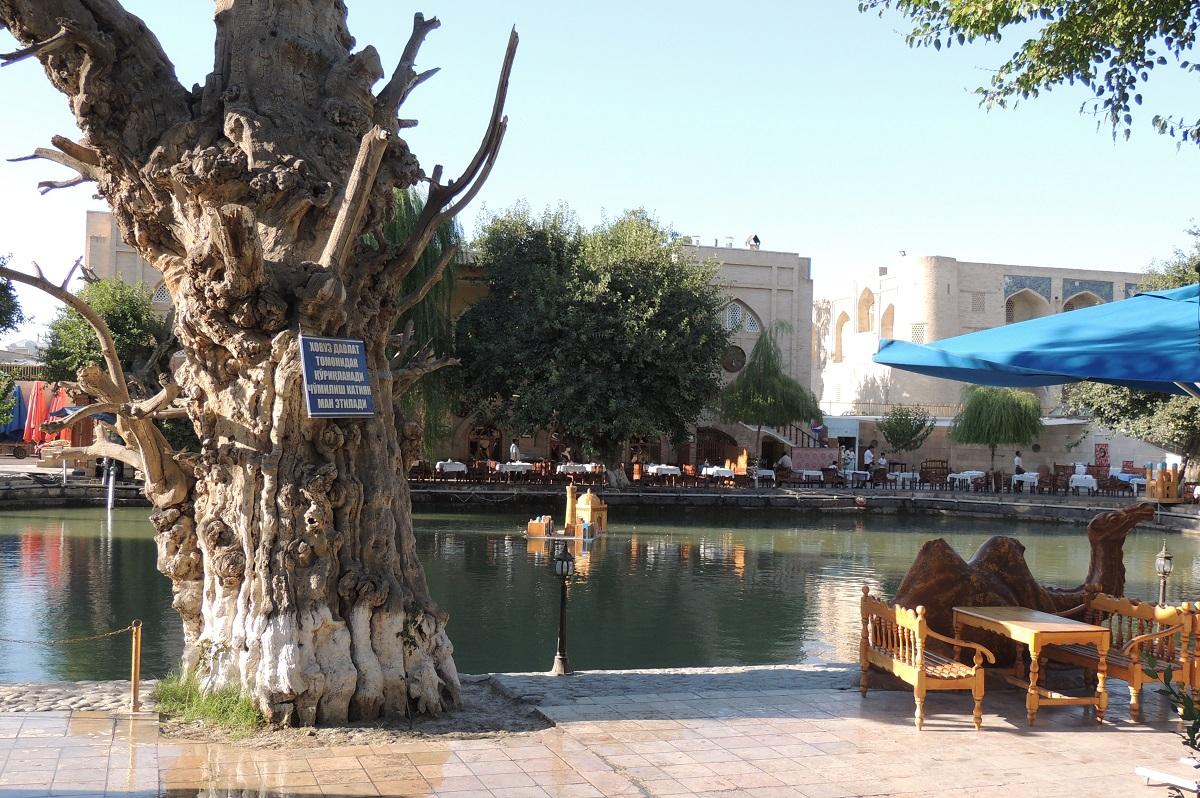 Khoja Gaukushan, Bukhara